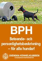 Gör en personlighets- och beteendebeskrivning av din hund!